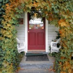 Front Entrance (ivy phase)